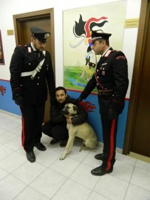 Roma, chiesto riscatto per un cane